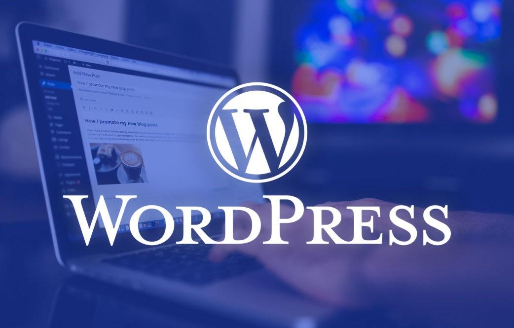 Looking-for-a-WordPress-Developer-1042x665